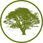 santa barbara tree service logo, small greeen tree with circle around it.